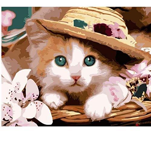 LIWEIXKY Katze Bilder Malerei by Zahlen DIY Leinwand Ölgemälde Dekoration Für Wohnzimmer Geschenk - Mit Rahmen - 40x50cm B07PS4T6H6   Erlesene Materialien