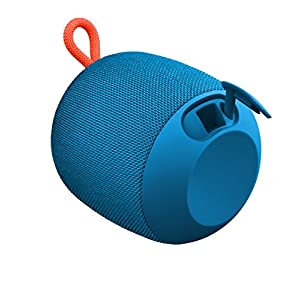 Ultimate Ears WONDERBOOM Waterproof Super Portable Bluetooth Speaker – IPX7 Waterproof – 10-hour Battery Life – Subzero Blue