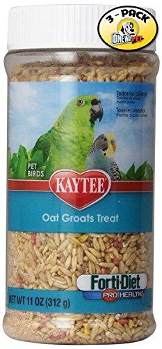 Kaytee Forti Diet Pro Health Oat Groats Treat Jar for Pets, 11-Ounce by Kaytee