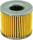 FRAM CH6000 Oil Filter for Motorcycles