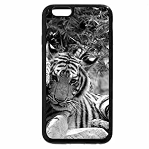 iPhone 6S Case, iPhone 6 Case (Black & White) - Royal Penguins