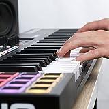 M-Audio Code 61 (Black) | USB MIDI Controller