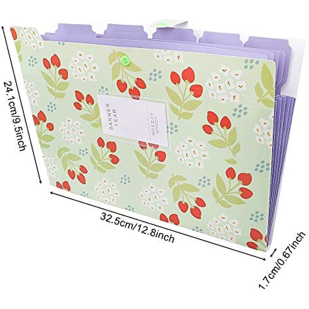 5 Pockets A4 Letter Size Snap Closure Plastic EOOUT 8pcs Expanding File Folders