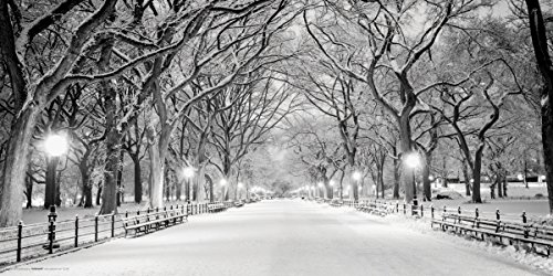 Culturenik New York City (NYC) Central Park Mall in Snow Decorative Photography Print (Unframed 12x24 ()