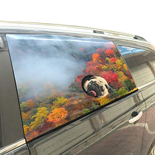 - Danexwi Fall Color Great Autumn Forest Foldable Pet Dog Safety Car Printed Window Fence Curtain Barriers Protector for Baby Kid Adjustable Flexible Sun Shade Cover Universal Fit for SUV