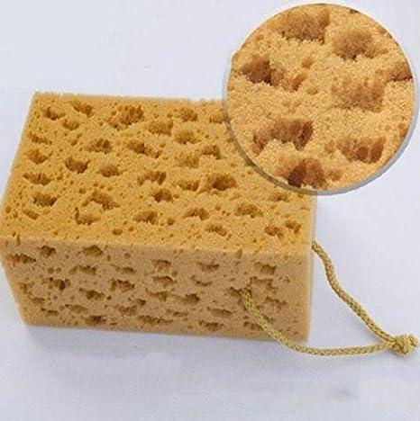 Coche Lavado Limpieza esponja bloque limpiador limpiaparabrisas Mini amarillo estimulos CORALINA: Amazon.es: Coche y moto