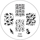 CH46 Professional Nail Art Salon Quality Stamp Template / Stamping Stencil / Image