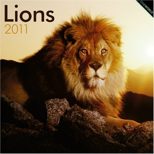 Lions 2011 Square 12X12 Wall Calendar by BrownTrout Publishers Inc (2010-08-01)