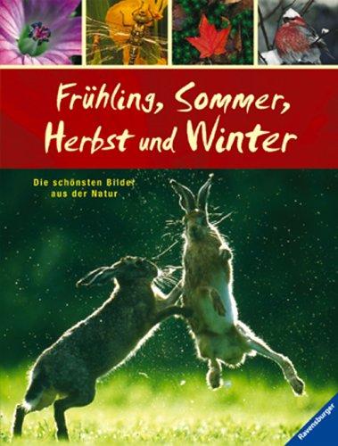 Frühling, Sommer, Herbst und Winter: Die schönsten Bilder aus der Natur