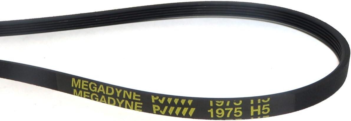 Megadyne - Correa de secadora 1975 H5: Amazon.es: Grandes ...