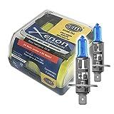 Hella H1XE-TLL Focos en Estuche, Color Azul, Paquete de 2