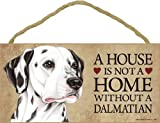 A house is not a home without Dalmatian - 5