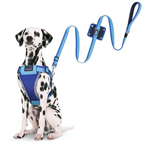 Dog Seat Belt Harness Leash, PETBABA No Pull Escape Proof Reflective Safe at Night Walking Harness Multifunctional Lead with Seatbelt Good for Your Pet to Travel - L in Blue by PETBABA