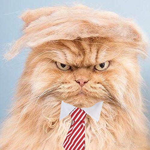 FMJI Trump Style Cat Wig Halloween Costumes – Pet Cosplay Hat and Hair Accessories Donald Cat with Collar & Tie Head…