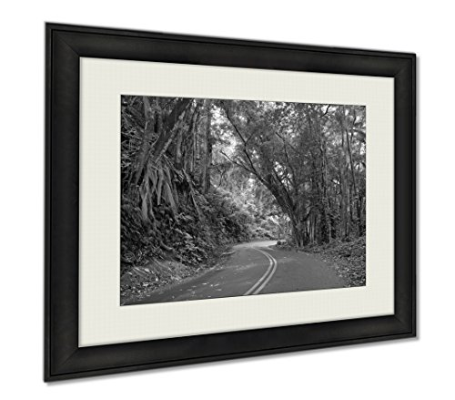 Ashley Framed Prints Driving On The Road To Hana Maui Hawaii, Wall Art Home Decoration, Black/White, 26x30 (frame size), - It Framed Maui Picture