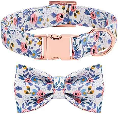 Dog Collar with Bow Tie Cute Pet Collar with Alloy Buckle & D Ring Adjustable Soft Dog Collar for Small Medium Large Girl Dogs Cats
