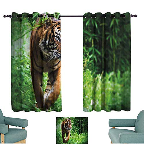 (HCCJLCKS Room Darkened Heat Insulation Curtain Tiger Siberian Large Feline at Zoo Wildlife at Captivity Unnatural Habitat Agressive Animal Darkening and Thermal Insulating W55 xL45 Multicolor )