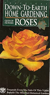 Down-To-Earth Gardening: Queen of Flowers-Roses