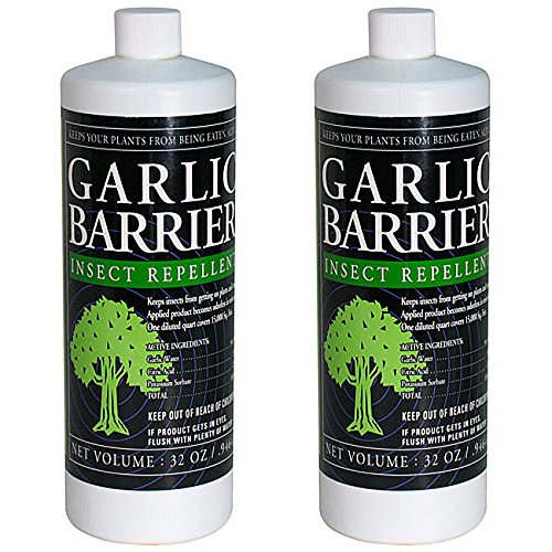 Garlic Barrier Insect Repellent Liquid Concentrate (32 Ounce, 2-Pack) by Mosquito