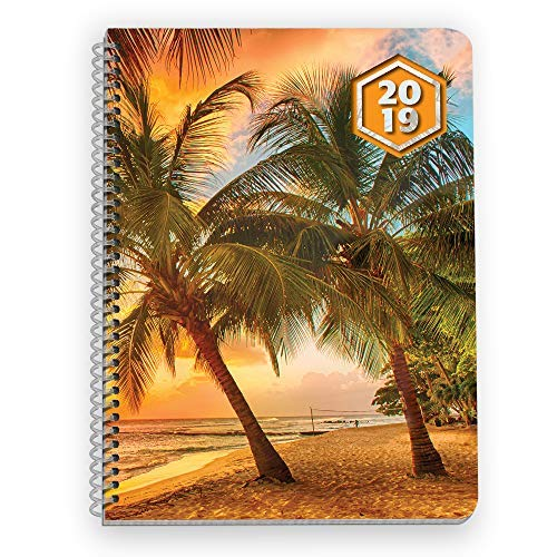 2019 Weekly Planner - 6.6 x 9 Inches - Week at A Glance, Daily Lines, Monthly Space, Yearly Calendars. Sunset Palm Trees. Organizer, Life Planner, Mid-Size.