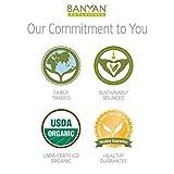Banyan Botanicals Nasya Oil - USDA Certified