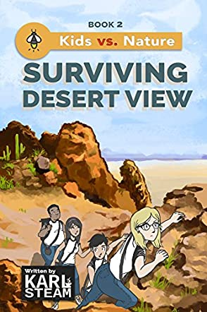 Surviving Desert View