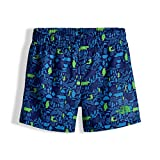 The North Face Kids Baby Boy's Hike/Water Shorts (Toddler) Cosmic Blue Wild West Critters Print/Classic Green 2T Toddler