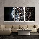 wall26 - 3 Panel Canvas Wall Art