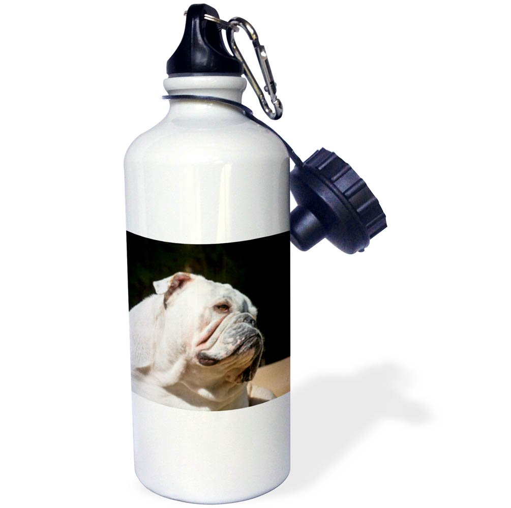 3dRose wb/_258307/_2 Brazil Straw Water Bottle