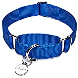 Dazzber Martingale Collar, Small, Royal Blue, Neck 11 Inch -15 inch, No Pull No Escape Dog Collar, Great for Training Walking Running Larger Image