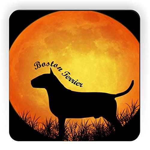 Rikki Knight Boston Terrier Dog Silhouette By Moon Design Square Fridge Magnet (Dog Silhouette Magnet)