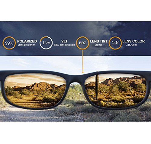 28d3440837 Amazon.com  Polarized IKON Replacement Lenses for Oakley Plaintiff Squared  Sunglasses - 24K Gold  Sports   Outdoors