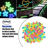 OVIAZA Glow in The Dark Garden Pebbles, Luminous Pebbles, Outdoor Decorative Stone for Walkways/Yard/Grass/Aquarium/Fish Tank, Outdoor Garden Decorative Stones Gravel (Multi Color)