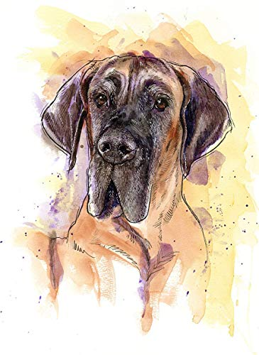 Great Dane Watercolor Art Print of Original Painting, Pet Themed Party Nursery Home Wall Decor, Gift for Dog Mom, Dad, Parent; Rainbow Bridge Pet Loss Sympathy Bereavement Housewarming Animal Picture