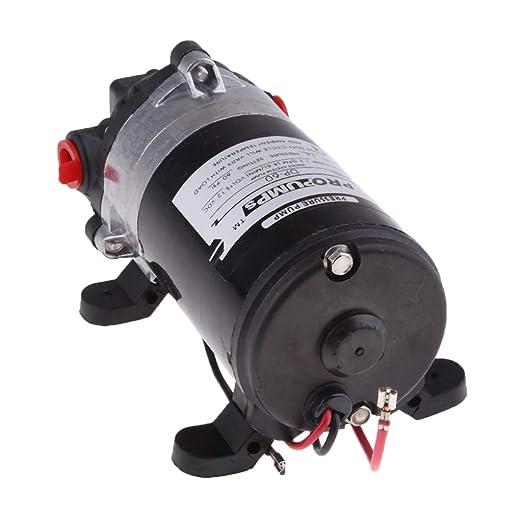 Homyl 12V Bomba de Agua 60PSI Bomba Autocebante Diafragma de Alta Presión Duro: Amazon.es: Coche y moto