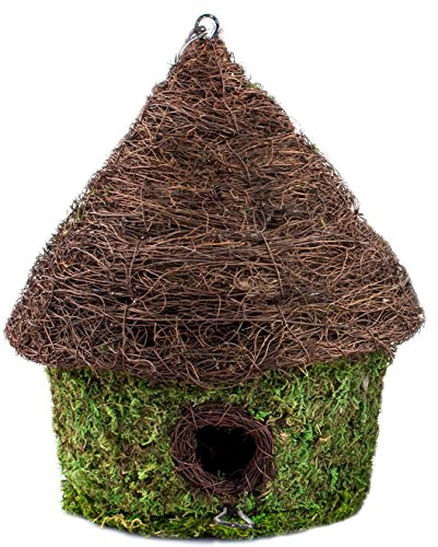 Super Moss (56053) Bungalow Woven Birdhouse Medium, 9.5'' by 10.5'', Fresh Green by Super Moss
