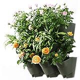 Worth Self-Watering Vertical Garden Wall Planters Garden | Olive Green (3-Pack) #4210