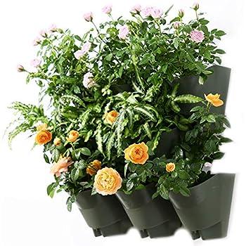 Amazon Com Bright Green Bg Wm8bw Grovert Living Wall Planter With