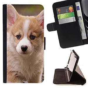 Dragon Case- Mappen-Kasten-Prima caja de la PU billetera de cuero con ranuras para tarjetas, efectivo Compartimiento desmontable y correa para la mu?eca FOR HTC One M7- Dog Cute Puppy Pet Paws