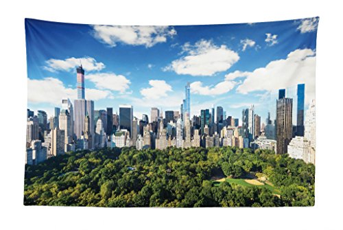 Lunarable NYC Tapestry, Central Park View to Manhattan at Sunny Day Skyline with Clouds Crowded Cityscape Image, Fabric Wall Hanging Decor for Bedroom Living Room Dorm, 45