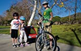 Allen Sports Steel Bicycle Trailer