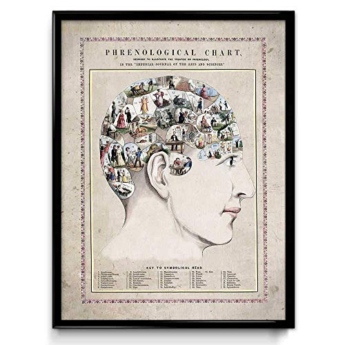 Orion Wall Decor - Phrenology Head Vintage Print - Psychology Poster - Anatomy Art - Anatomy Picture - Wall Art - Office Decor - Doctor Decor - VP1084 - Rustic Antique - 18 x 24 in