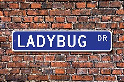 (Ladybug, Ladybug Gift, Ladybug Sign, Ladybug Decor, Ladybug Lover, Beetle Family, Colorful Bugs, Custom Street Sign, Metal Sign, 4