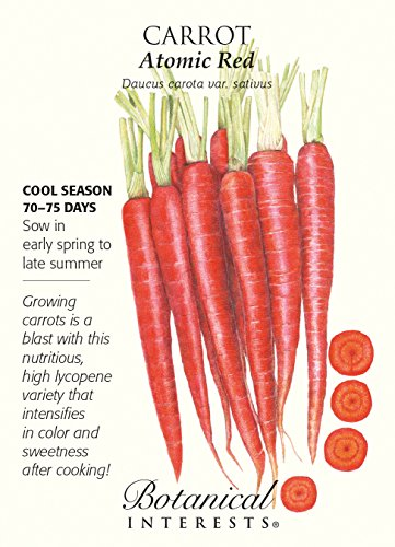 red carrots - 8