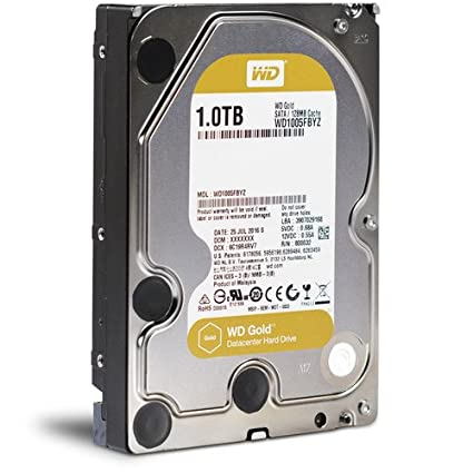 WD Gold 1 TB (Wd1005Fbyz) Gold Datacenter Hard Drive (Sata 6Gb/S, 3.5 Inch, 7200 Rpm, 128Mb Cache) SATA at amazon