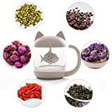 Small Cute Design Cat Style Glass Tea Cup with Fish Infuser and Lid for Office Home Afternoon Tea Time; Perfect Gift Idea(8.5 oz/250ml, Meow)