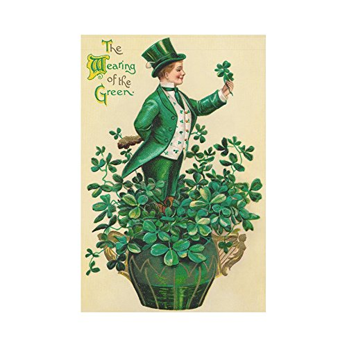 InterestPrint Vintage St.Patrick's Day Polyester Garden Flag