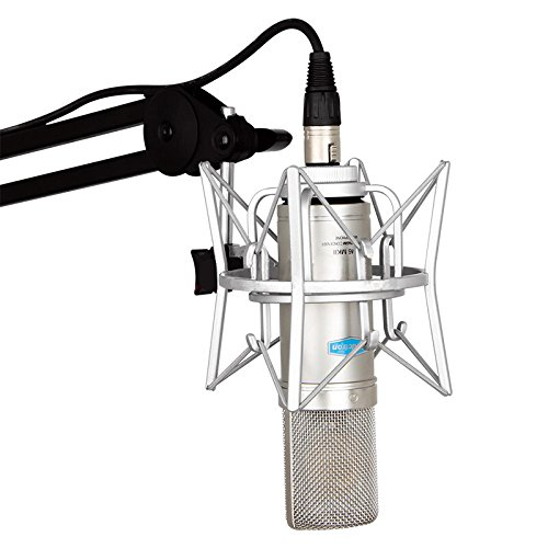 Price comparison product image Alctron Large Gold-Plated Diaphragm CM6 Professional FET Cardioid Condenser Microphone for Computer Studio Recording Broadcast, bass