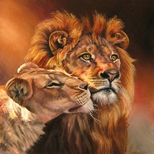 Orsit DIY 5D Diamond Painting Kit, Full Diamond Embroidery Cross Stitch Arts Craft Supply for Home Wall Decor 14X14 inches,Lion