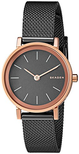 Skagen Women's SKW2492 Hald Light Brown Mesh (Skagen Womens Black Mesh Watch)